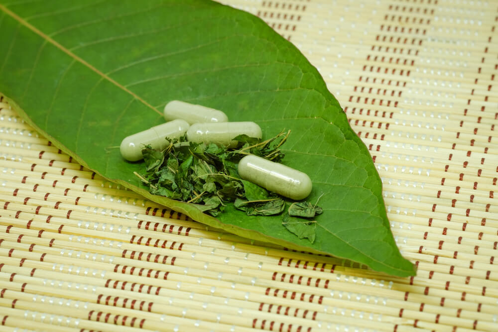 6 Types of Kratom You Need to Know About